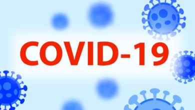 Photo of Které společnosti budou růst díky COVID-19?